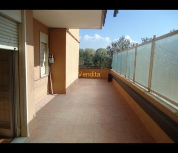 Appartamento di ampia metratura con terrazzo